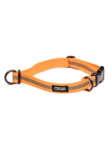 Obojek pro psy Go Dog Glo Everyday Collar - Titanium Orange
